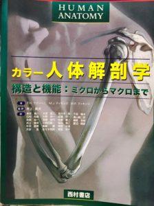カラー人体解剖